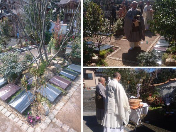 本迹寺 「いすみ庭苑」がオープンしましたのイメージ画像