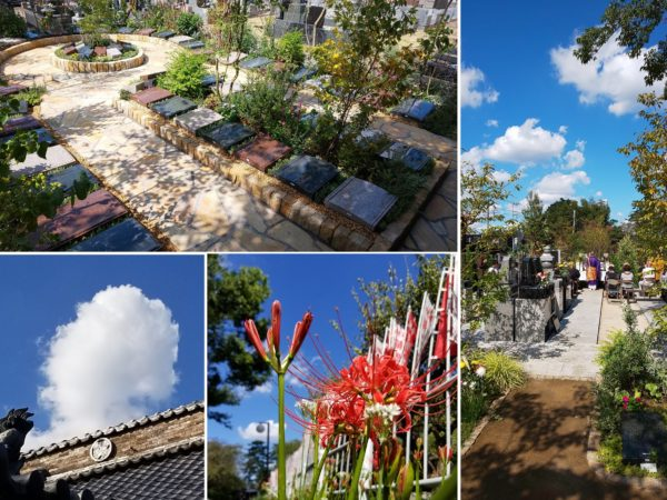 【松戸庭苑】樹木葬 新区画(第2期)開苑のご案内のイメージ画像