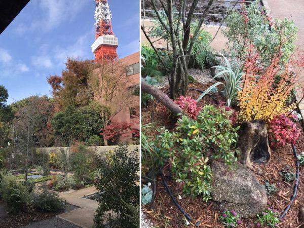 宝珠院「芝庭苑」がオープンしましたのイメージ画像