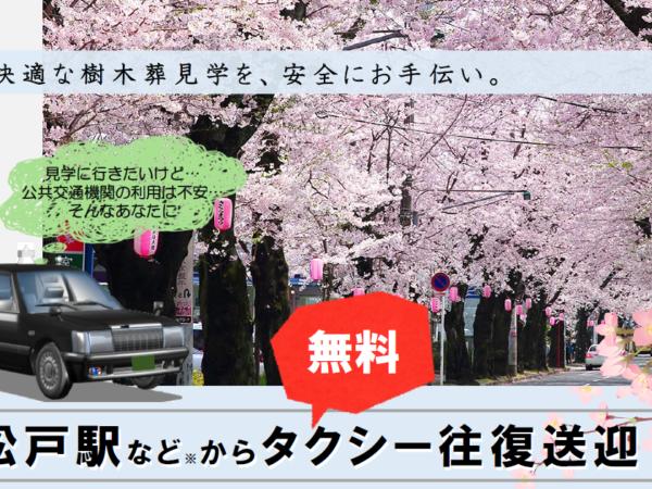 【8日間限定】樹木葬見学を安全にお手伝い~松戸駅などから無料タクシー往復送迎(完全予約制)のイメージ画像